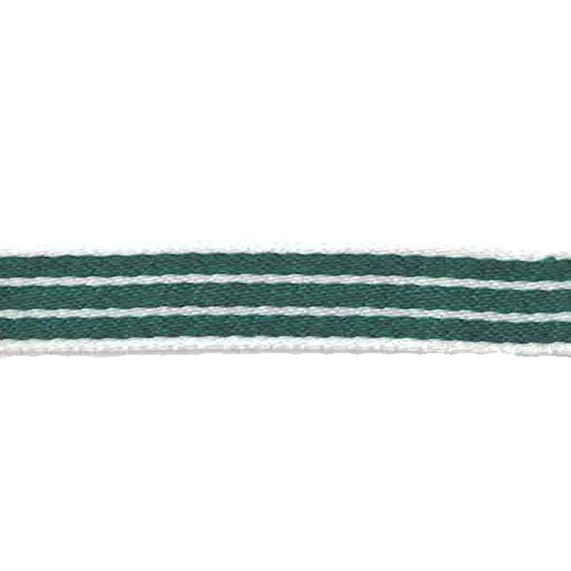Тесьма сутаж 1см 43-45м/рулон, цв: зеленый/белый